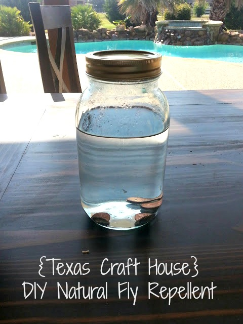 DIY Natural Fly Repellent   Texas Craft House